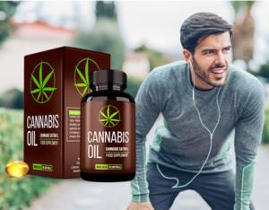 Cannabis Oil: Cena? Gdzie kupić?