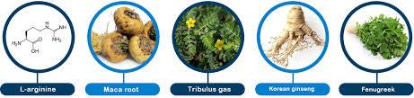Titan Gel - jakie składniki zawiera żel?